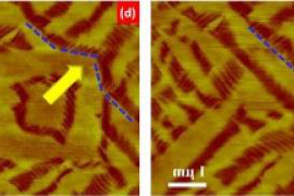 This AFM image shows a recoverable phase transformation in a bismuth ferrite film introduced by an applied electric field. The dashed blue line shows the relocation of the phase boundaries.