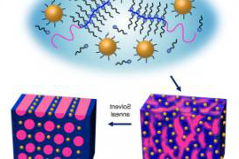 Upon solvent annealing, supramolecules made from gold nanoparticles and block copolymers will self-assemble into highly ordered thin films in one minute. - See more at: //newscenter.lbl.gov/2014/06/09/nanoparticle-thin-films-that-self-assemble-in-one-minute/#sthash.715T7jT5.dpuf